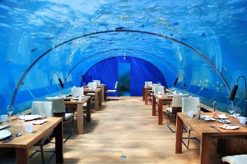 Unusual and fascinating tourist attractions 2 for Ithaa restaurant maldives